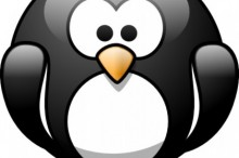 cartoon-penguin-clip-art_424300